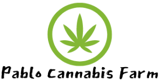 Pablo Cannabis Farm
